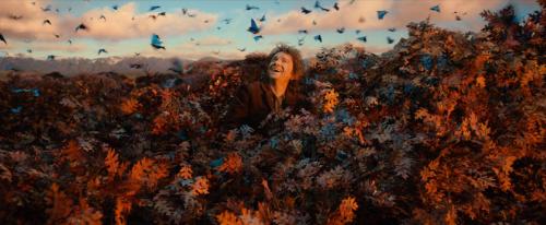 Bilbo sees the Sky